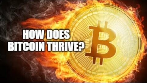 Bitcoins' FATE?! Is the entire Crypto market riding on it?